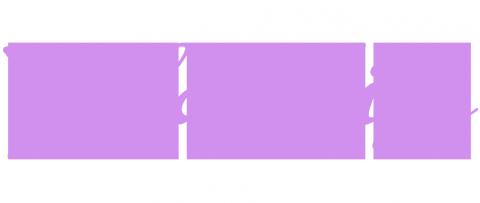 valdadige_logo